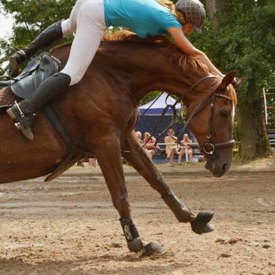 Jezdectví, focení závodů, focení koní