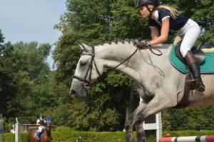 Jezdectví, focení závodů, focení koní, zážitkové focení